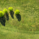 Golf field view from above - PhotoDune Item for Sale