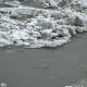 Frozen River Melting in Spring with Ice Flakes Flowing - VideoHive Item for Sale