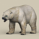 Game Ready Polar Bear - 3DOcean Item for Sale