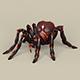 Game Ready Fantasy Spider