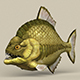 Game Ready Monster Fish - 3DOcean Item for Sale