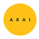 Akai – Creative Google Slides Template - GraphicRiver Item for Sale