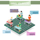 Animals Volunteers Isometric Infographics