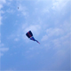 Flying kite - VideoHive Item for Sale