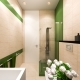 Interior Design of the Bathroom in a Modern