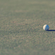 golf ball on grass - PhotoDune Item for Sale