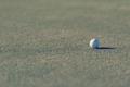 golf ball on grass - PhotoDune Item for Sale