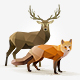 Set of Polygonal Animals - GraphicRiver Item for Sale