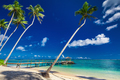 Tropical beach scene with coconut palm trees and jetty, South Pa - PhotoDune Item for Sale