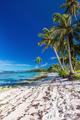 Amazing deserted tropical beach on south side of Samoa Island wi - PhotoDune Item for Sale
