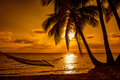 Silhouette of hammock and palm trees on a tropical beach at suns - PhotoDune Item for Sale