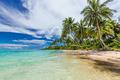 Wild beach with palm trees on south side of Upolu, Samoa Islands - PhotoDune Item for Sale