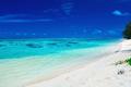 Sandy beach with rocks and palms on Cook Islands, Rarotonga - PhotoDune Item for Sale