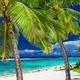 Tropical beach with rocks and palms on Cook Islands, Rarotonga - PhotoDune Item for Sale