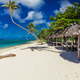 Tropical natural beach on Samoa Island with palm trees and woode - PhotoDune Item for Sale