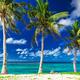 Tropical Lalomanu beach on Samoa Island with three palm trees, U - PhotoDune Item for Sale
