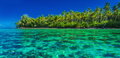 Underwater coral reef next to green tropical island, Moorea, Tah - PhotoDune Item for Sale