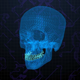 Digital Cyber Skull Head 4K - VideoHive Item for Sale