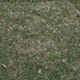 Spring Grass Ground - 3DOcean Item for Sale