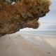 Beautiful Wild Tropical Beach Near Anda with Granite Rocks. Bohol Island. Philippines - VideoHive Item for Sale