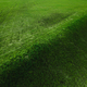Hill in a Grassy Field - PhotoDune Item for Sale