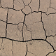Ground Texture Desert Cracks