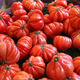 Big red tomatoes at the market - PhotoDune Item for Sale