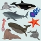 Collection of Sea Animals - GraphicRiver Item for Sale