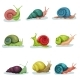 Collection of Snails of Different Shell Colours - GraphicRiver Item for Sale