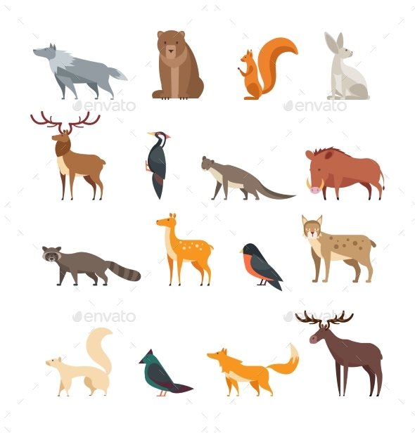 Forest Wild Animals and Birds Cartoon Vector Set - Animals Characters