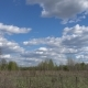 Field, Forest, Blue Sky with Clouds on a Spring Sunny Day. - VideoHive Item for Sale