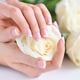Hands of a woman with beautiful french manicure and white roses - PhotoDune Item for Sale