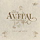 Avital Font Duo - GraphicRiver Item for Sale