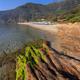 Paradise beach, Thassos island, Greece - PhotoDune Item for Sale