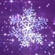 Magical Purple Snowflakes - VideoHive Item for Sale