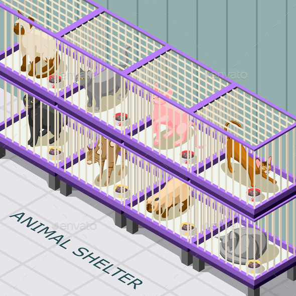 Cat Shelter Isometric Background - Animals Characters