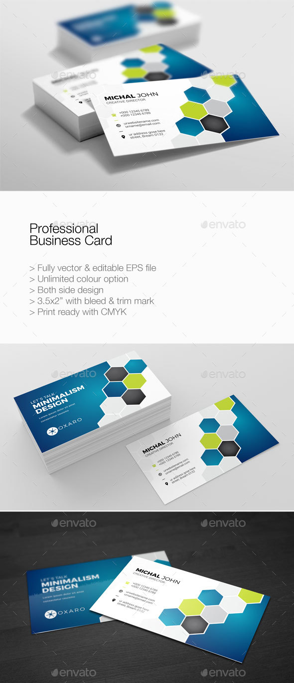 Professional business card by pantonstudio graphicriver professional business card corporate business cards colourmoves