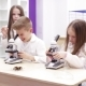Little Girl Is Looking Through a Microscope at a Lesson in School - VideoHive Item for Sale