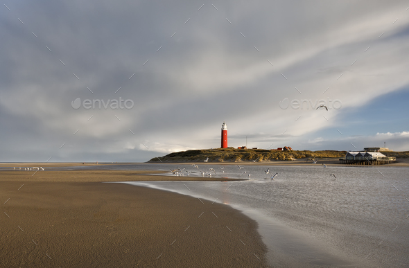 seagulls over lighthouse on sea coast - Stock Photo - Images