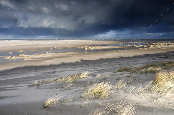 North sea coast on stormy sunny day - Stock Photo - Images