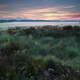 summer sunrise over marsh - PhotoDune Item for Sale