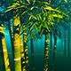 Bamboo Forest In The Fog - VideoHive Item for Sale