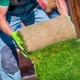 Grass Turfs Garden Work - PhotoDune Item for Sale
