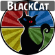 BlackCatSounds