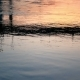 City Water Evening - VideoHive Item for Sale