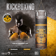 Kickboxing Fitness Flyer / Poster - GraphicRiver Item for Sale