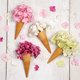 ice cream cones with beautiful flowers - PhotoDune Item for Sale
