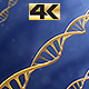 DNA 4K - VideoHive Item for Sale