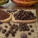 Coffee Beans, Cacao Nibs, Cocoa Powder, Raw Cocoa Fruit, Cacao Beans on Burlap - VideoHive Item for Sale