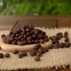 Coffee Beans on Burlap - VideoHive Item for Sale